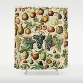 Adolphe Millot- Vintage Fruits Shower Curtain