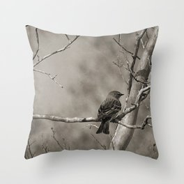 The Quest:  Black and White Bird Antiqued Throw Pillow