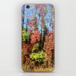 fall - winter iPhone Skin