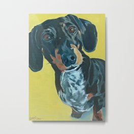Dachshund Dog Portrait Metal Print