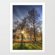 Autumn in Greenwich Park Art Print