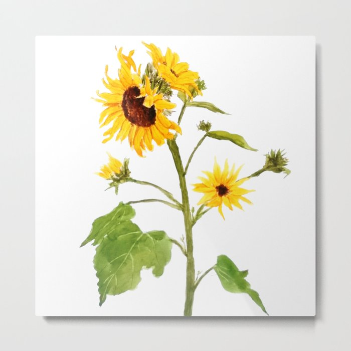One sunflower watercolor arts Metal Print