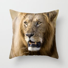 Lion, Masai Mara Throw Pillow
