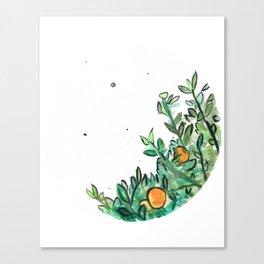Circle Orange Tree Canvas Print