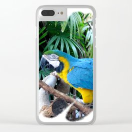 Blue Yellow Macaw. Parrot Clear iPhone Case