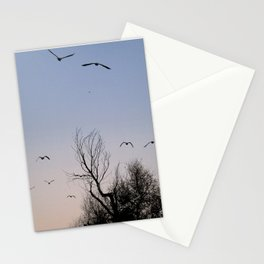 Migrate Stationery Cards