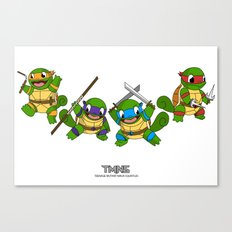 TMNS Canvas Print