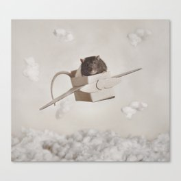 Ratty Plane Canvas Print