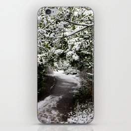 Snowy Path in The Trees iPhone Skin