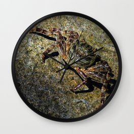 Little Creature Poses 2 Wall Clock