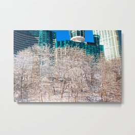 Frozen trees Metal Print