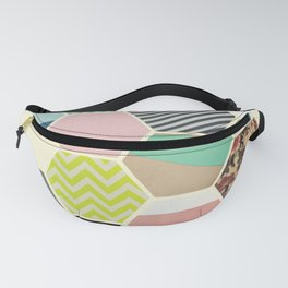 Florals and Stripes Fanny Pack