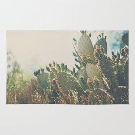 desert prickly pear cactus ... Rug