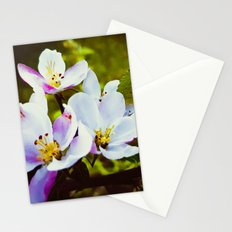 Apple Blossom Days Stationery Cards
