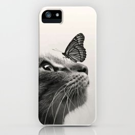 Butterfly on a cat's nose iPhone Case