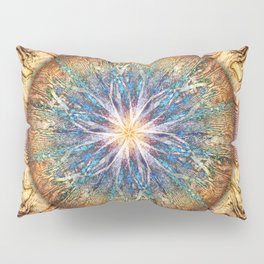 A Wrinkle in Time Pillow Sham