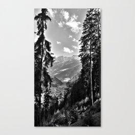 forest panorama kaunertal alps tyrol austria europe black white Canvas Print