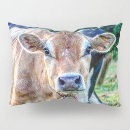 Cow 66 Pillow Sham
