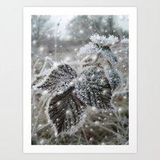 Ice cold beauty Art Print