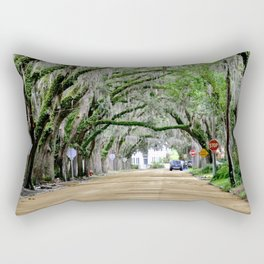 The Fountain of Youth 450th Year Celebration Rectangular Pillow
