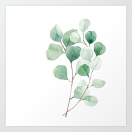 Eucalyptus in watercolor print Art Print