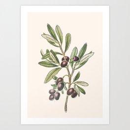 Fruit Design 11 Art Print