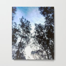 Silhouette of trees with a sky background Metal Print