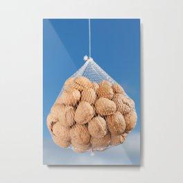 Bag of nuts Metal Print