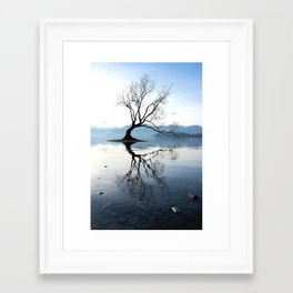 The Wanaka Tree, South Island, New Zealand Framed Art Print