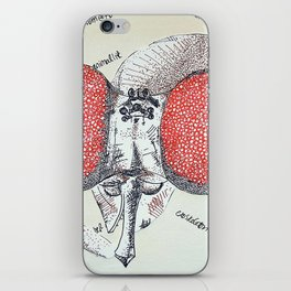 An Insect also iPhone Skin