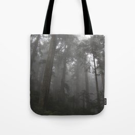 Mount Pilchuck 01 Tote Bag