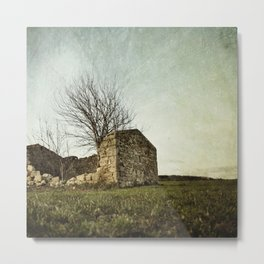 not just naked branchs and falling stones Metal Print