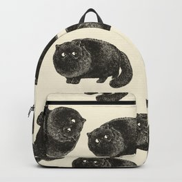 Black Persian Cat Backpack