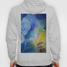 Gently into the Light Hoody