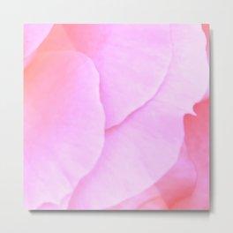 Flower | Flowers | Floral | Pink Rose Petals | Nadia Bonello Metal Print