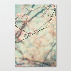spring #2 (pink&bleu) Canvas Print