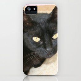 Beautiful Black Cat Portrait  iPhone Case