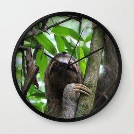 Sloth_20171101_by_JAMFoto Wall Clock