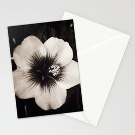 Mallory  Stationery Cards