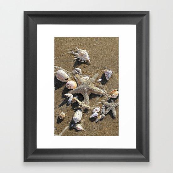 Sun, Sea, Sand, Shells, Star, Summer Framed Art Print