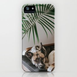 Dog by Jake Noren iPhone Case