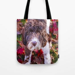 Labradoodle In Autumn Tote Bag