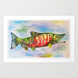 Chum Salmon Art Print