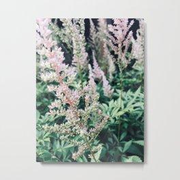 Flowers in the Garden Metal Print
