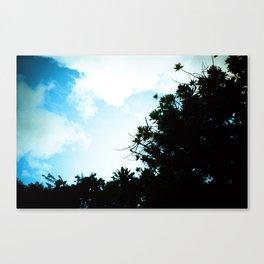 Lomo LC-A take #35 Canvas Print