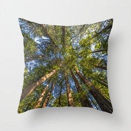 Coastal Redwoods aka Coast Redwood and California Redwood (Sequoia sempervirens) Throw Pillow