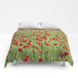 A Pasture Of Red Poppies and Remembrance Comforters