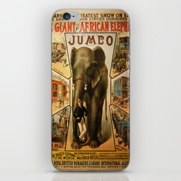 Vintage poster - Jumbo iPhone Skin