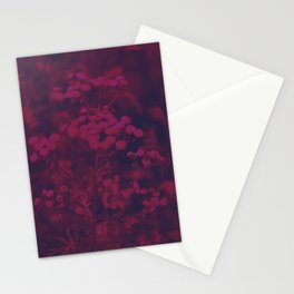 Photograph of wild and wild plants in the field beside the river, in warm color and intense pink Stationery Cards