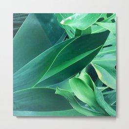 Fine Art Melange of Lush Leaves Photo Metal Print